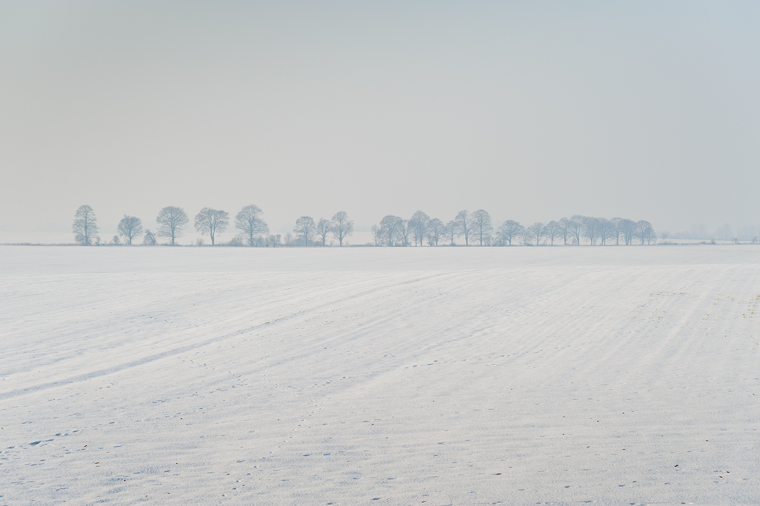 Winterlandschaft, Flämming | Brandeburg